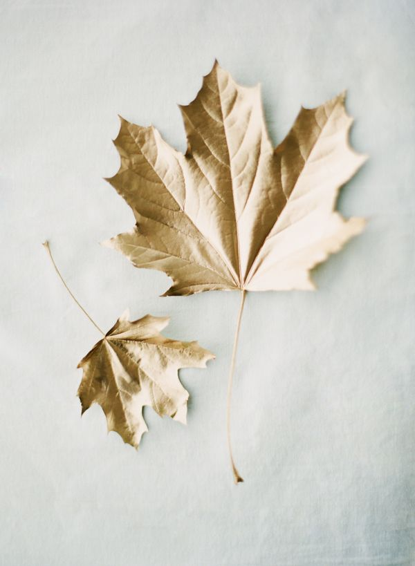 gold leaves DIY