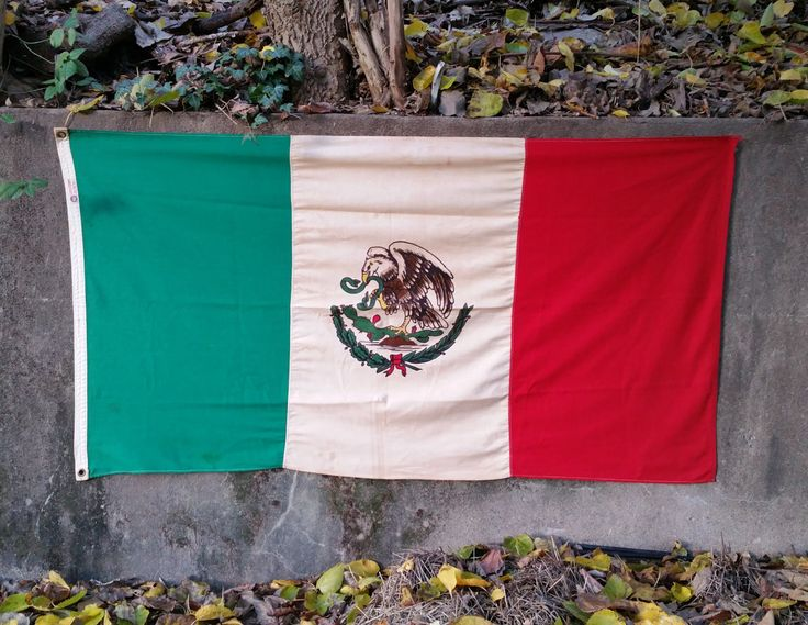 Vintage Mexican Flag Defiance Annin Flag Company Flag of Mexico by GladStoneatHome on Etsy