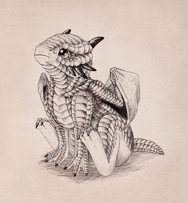 Drachen Baby