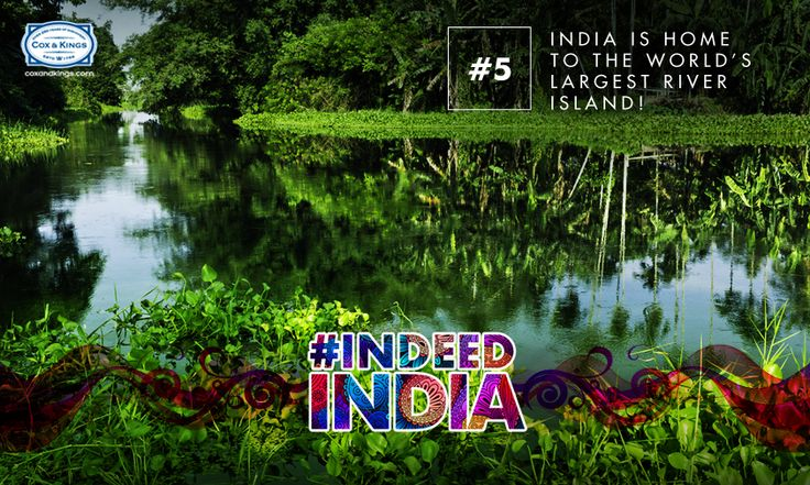 Situated along the Brahmaputra river, the #Majuli Island in Assam boasts of radiating rice fields and water meadows glowing with flowers. This 452 square kilometer island is truly a celebration of fascinating earthly creations and nature's beauty. #IndeedIndia #Travel