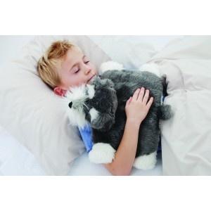 Heated Scented Dog Sensory Room Pinterest