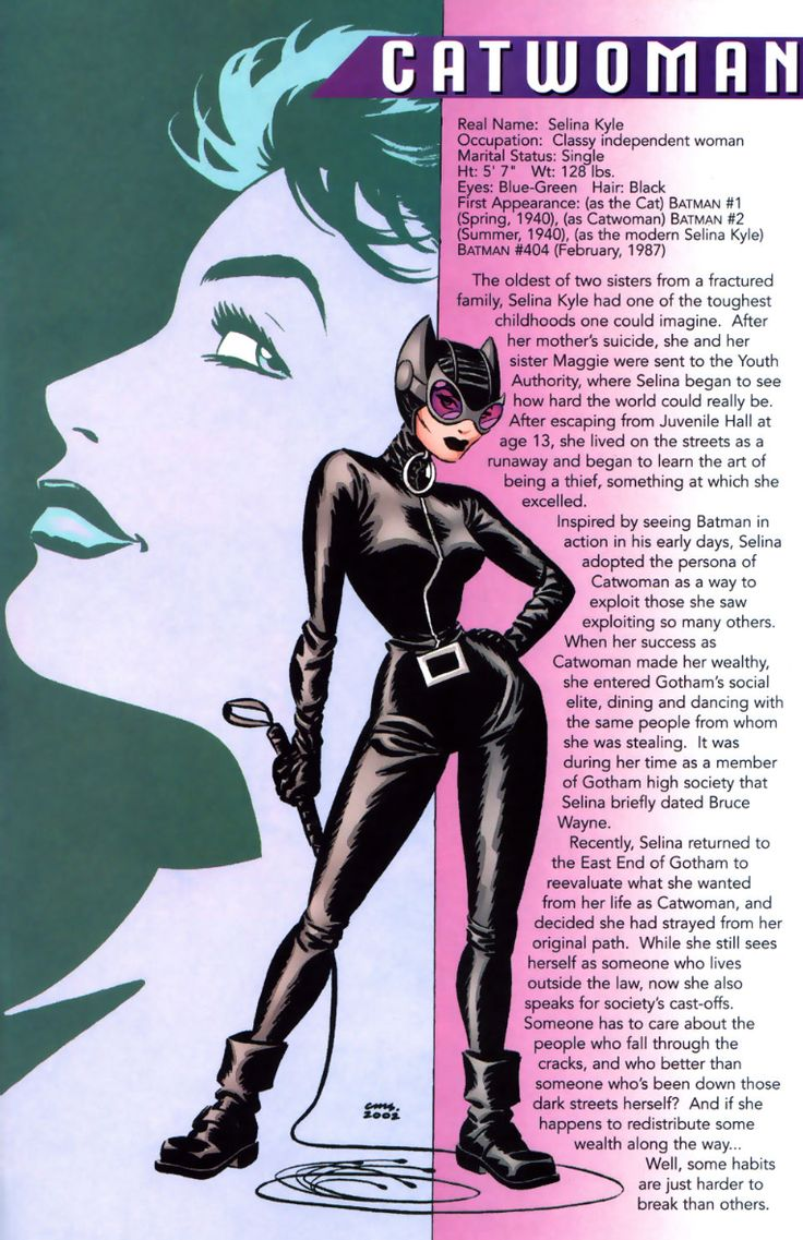 The Blog of Angst and Science : Catwoman info page written by Ed Brubaker art by Cameron Stewart