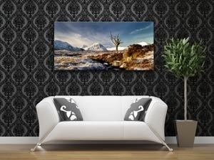 canvas prints at http://www.fotoviva.co.uk