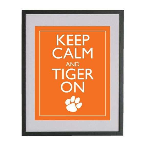 There is NO CALM in our house when TIGERS are on!!! :)