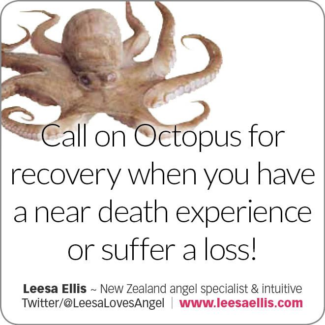 Call on #Octopus for recovery when you a near death experience or suffer a loss! #animaltotems #spiritual #metaphysical
