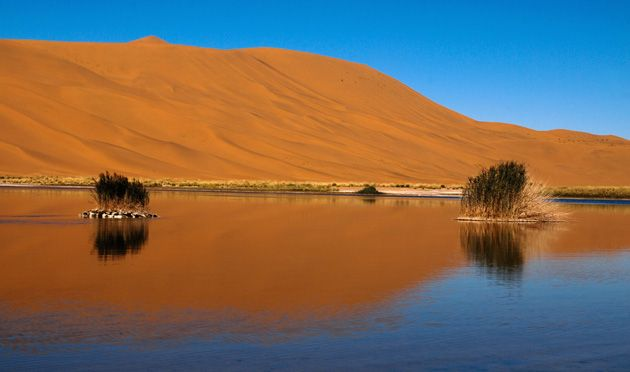 Start the camel trekking from where the Great Wall ends in the west; the sand dunes of the Gobi desert; monasteries and temples in oases and in bustling cities