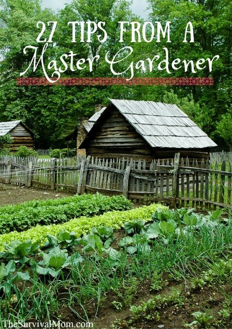 27 Tips from a Master Gardener via The Survival Mom