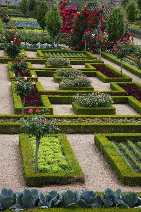 Famous gardens of the world -The Cabbage Garden - Villandry, France