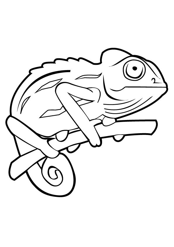 The Coiled Smiling Chameleon Coloring Page Tree Coloring Page Coloring Pages Chameleon Color