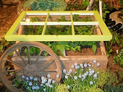 chic cold frame :: zippy painted window