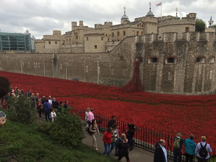 Tower of London poppies. Just amazing sight