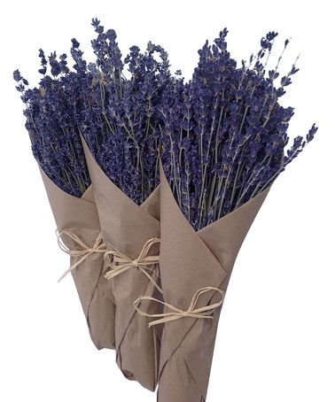 Loving this French Dried Lavender Bouquet Set on #zulily! #zulilyfinds