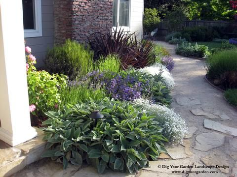 landscape designer san anselmo dig your garden creates beautiful eco friendly landscapes and garden designs for marin county and sf bay area residences