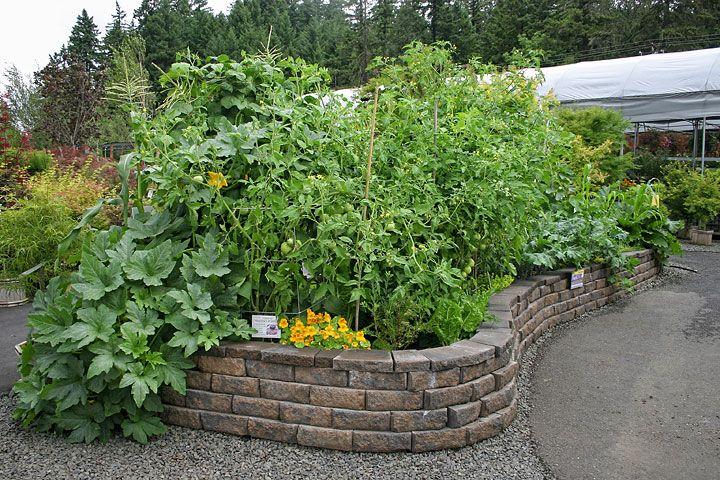 16 best garden soil solutions from black gold images on for Black garden soil
