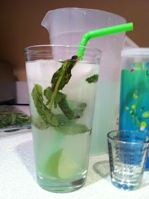 Hem and Her: Skinny Mojito  1 packet crystal light mojito mix, 6 cups water, fresh mint, lime wedges, shot and 1/2 of rum or vodka    prep pitcher of crystal light using only 6 cups of water  add ice and fresh mint to glass and muddle  add liquor and mojito mix