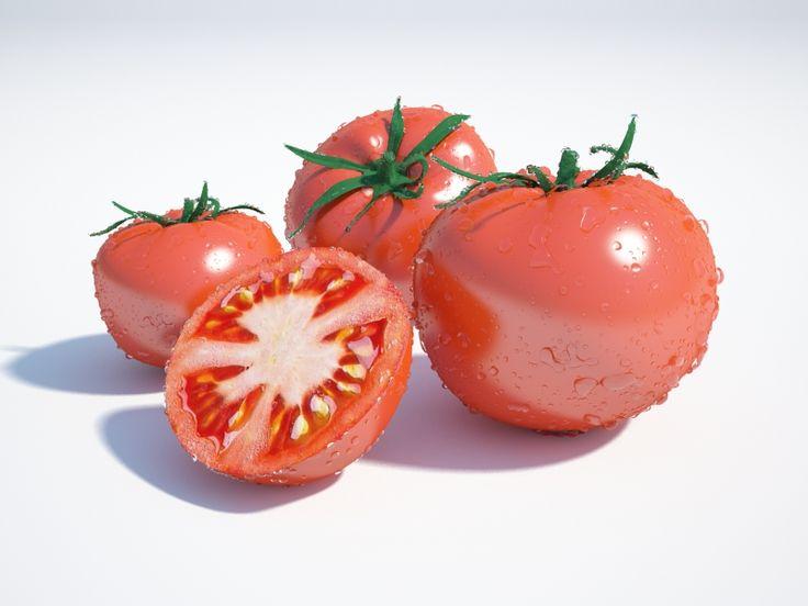 Tomatoes 3D Model Download | obj max - 3D Squirrel