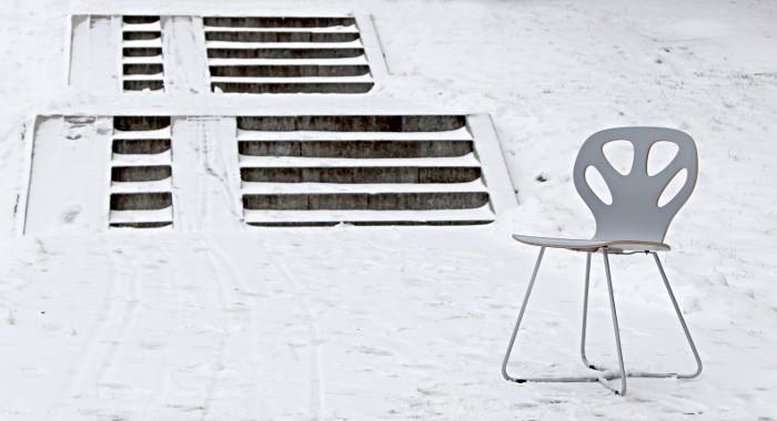 Maple chair by WertelOberfell