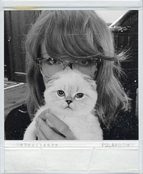 Beautiful Photo Taylor Swift and your Cat