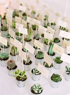Boho and green wedding decor idea: succulent and cacti escort cards