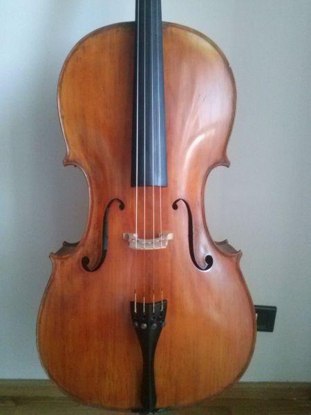 Violoncello intero | Violoncelli | Trova le offerte su Musicusata.it
