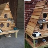 Triplex For Cats A Weatherproof Lodge Outdoor The Most Awesome Cathouse Ever Neeeeeeed This