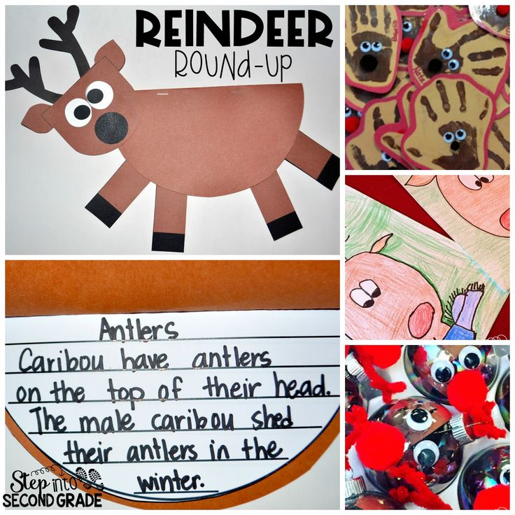 Reindeer and caribou activities, ideas, resources for primary education and pre-school