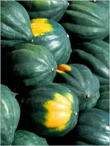 Fruit and Vegetable Database : Acorn Squash Nutrition, Storage, Selection, Preparation: Benefits to Health : Fruits And Veggies More Matters.org
