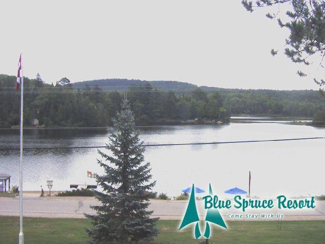 Blue Spruce Resort - Webcam