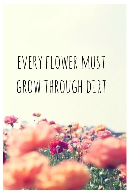 Every flower must grow through dirt. Hang on, flowers! :)