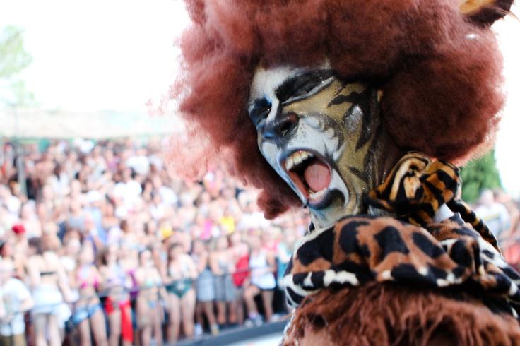 Zoo Project Festival ... Canooottt waaiittt
