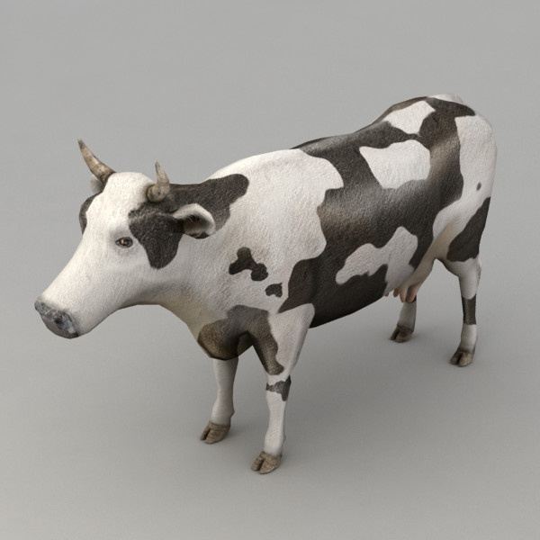 cow skeleton 3d model - Cow by Kvakling