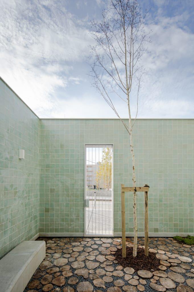 Jardins que dão pouco trabalho a manter: bonitos e económicos (De Elisabete Figueiredo - HOMIFY)