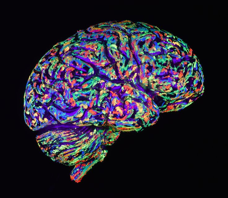 What's the Difference Between Alzheimer's and Vascular Dementia?