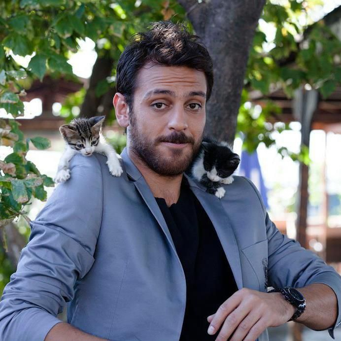 Erkan Kolcak Kostendil is great, but concentrate on the cats now... :)