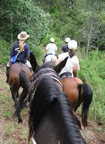 Lockyer valley Horse Riding Holidays