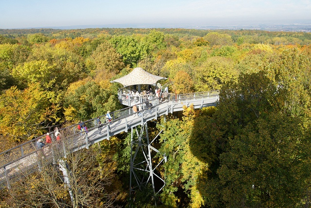 Hainich National Park Canopy Walk -(Baumkronenpfad) - Thuringer, Germany;  a path through the tree tops, 131 feet above the ground;  one of the 'treecrows' along the way;  photo by Michael Panse, via Flickr