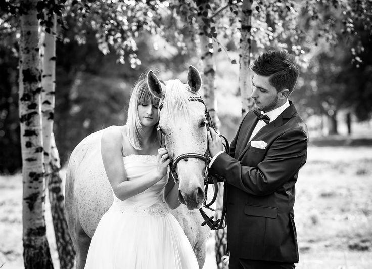 Sesja ślubna, koń, zdjęcia z pleneru Ciężkowice