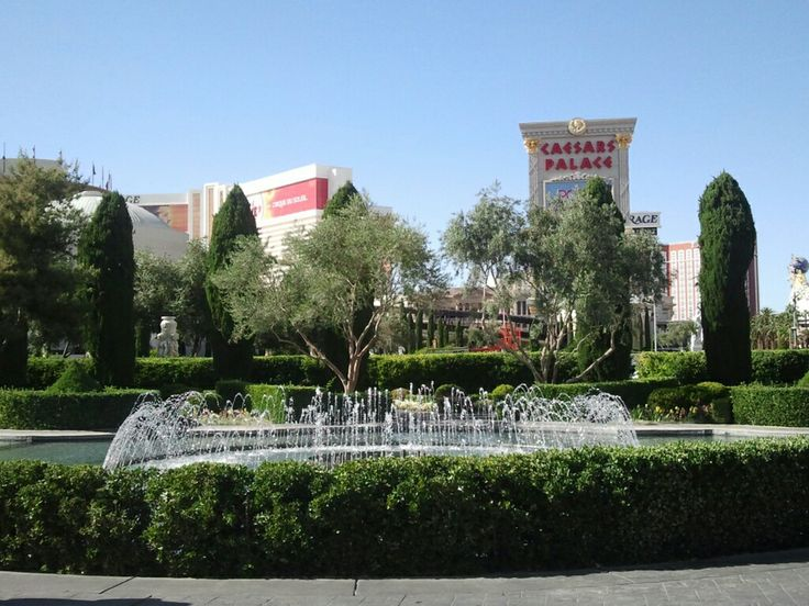 The Las Vegas Strip in Las Vegas, NV