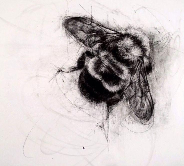 пчелы в графике картинки что как