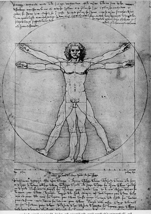 Homem Vitruviano, Estudo de proporções, de De Architectura Vitrúvio, tinta por Leonardo Da Vinci (1452-1519, Italy)