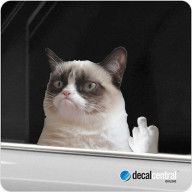 GRUMPY CAT GIVING THE FINGER Flipping The Bird Funny Decal Sticker Car 4×4