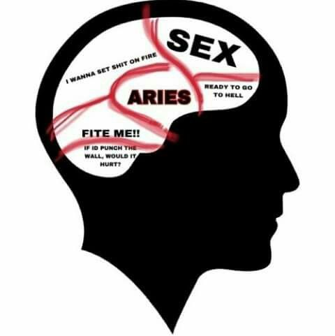 Image result for ARIES