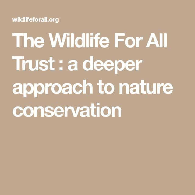 The Wildlife For All Trust : a deeper approach to nature conservation