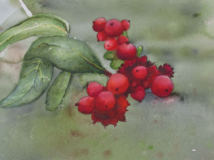 watercolor, aquarelle