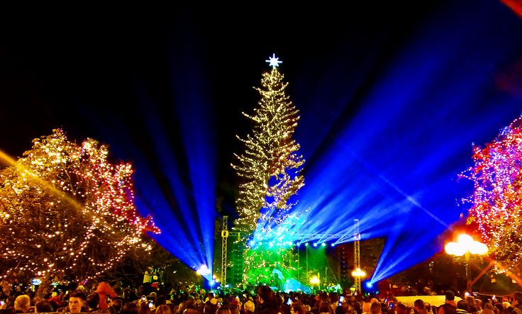 www.hostelmeteora.com Trikala city - Christmas tree 2015