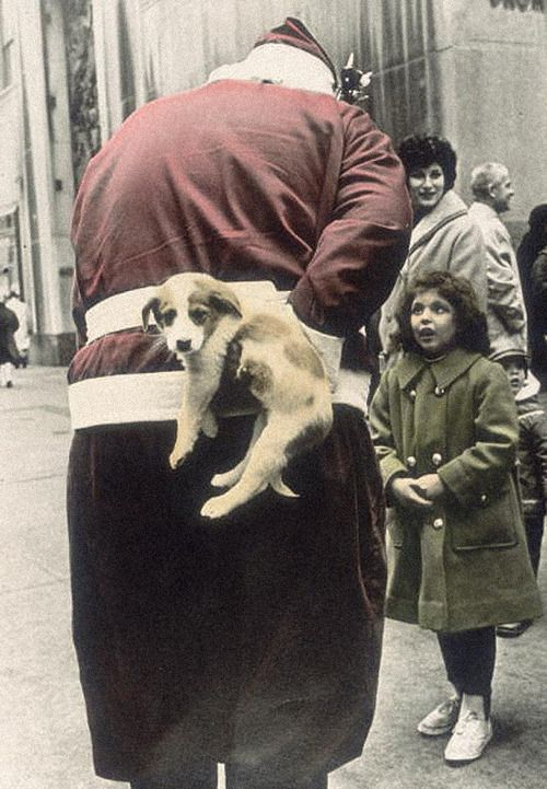 Christmas Surprise - 1955  Photo: Nat Fein