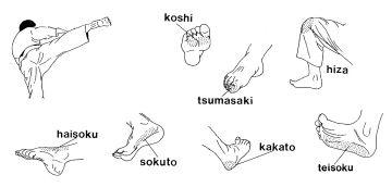Techniques Karaté - Les percussions avec les pieds
