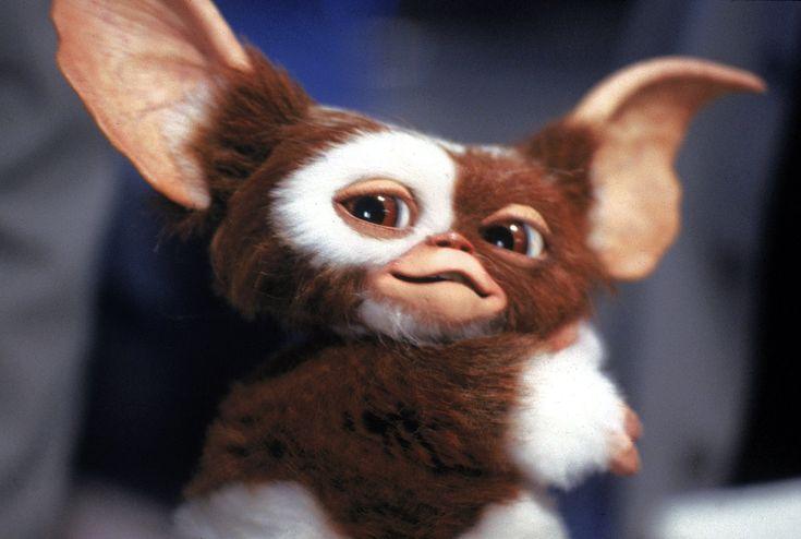 Gizmo (Gremlins, 1984)