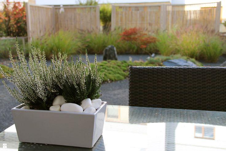 Ogród - zdjęcie od HADIKA - Ogród - HADIKA