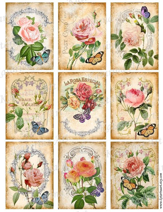 Vintage Roses Shabby chic. French Printable rose images. Digital collage sheet.